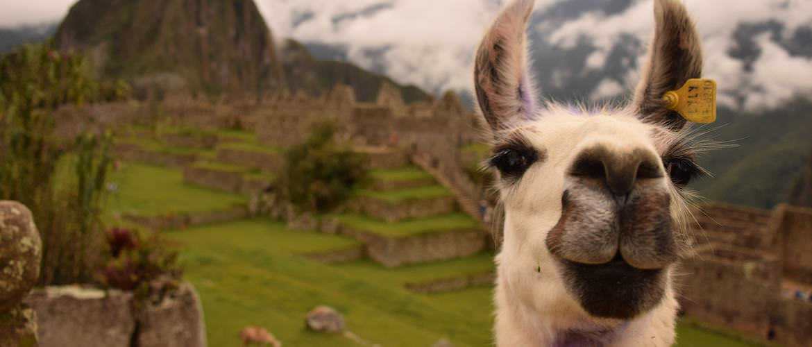 How to Make the Most of Your Machu Picchu Vacation